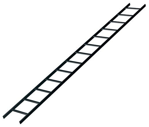 "Ladder Rack 10'X24"" Black"