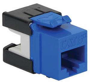 INSERT CAT 6A BLUE HD